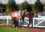 The parade ring at Cheltenham Dec 2012