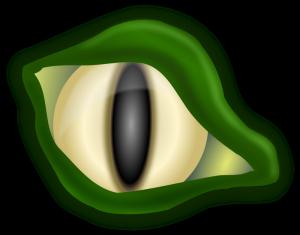 croc-eye-300x235