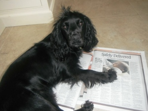 Bonnie, reading my story in TWN. And.. er.. sorry.. also lying on Sally's.