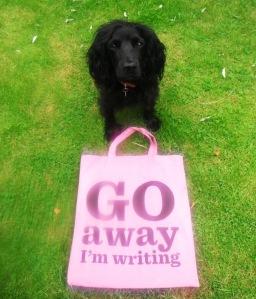 Go Away I'm writing 002
